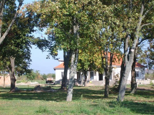 Polgárdi, kúria, kastély eladó 1